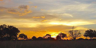 BOT.-Those-unforgettable-African-Sunsets-!
