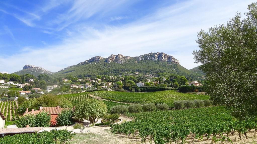Cassis Landscape